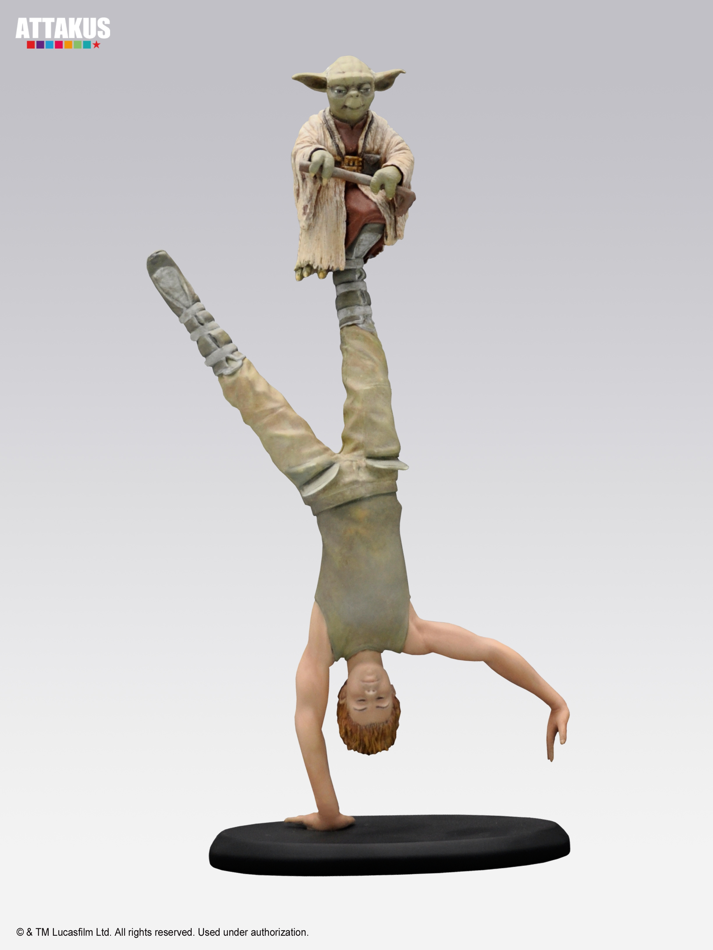 Yoda & Luke Skywalker Dagobah Training